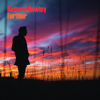 Further - Richard Hawley
