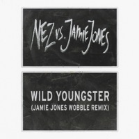 Wild Youngster (feat. ScHoolboy Q) [Jamie Jones' Wobble Remix] - Single