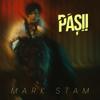 Mark Stam - Pașii artwork