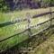 Cover Me in Sunshine (feat. Pamela Pink) - Tiffany Mason lyrics