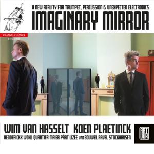 Wim Van Hasselt & Koen Plaetinck - Imaginary Mirror