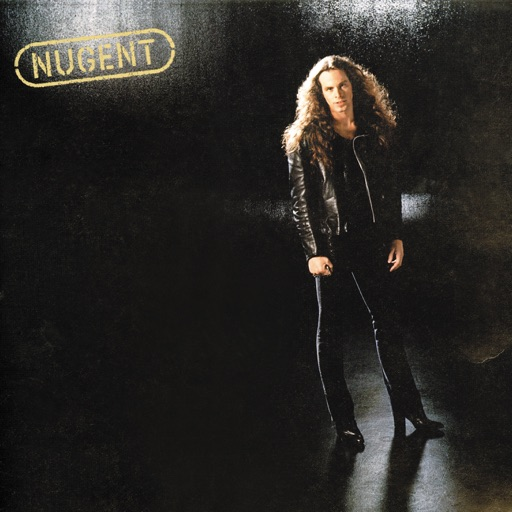 Art for Tailgunner by Ted Nugent