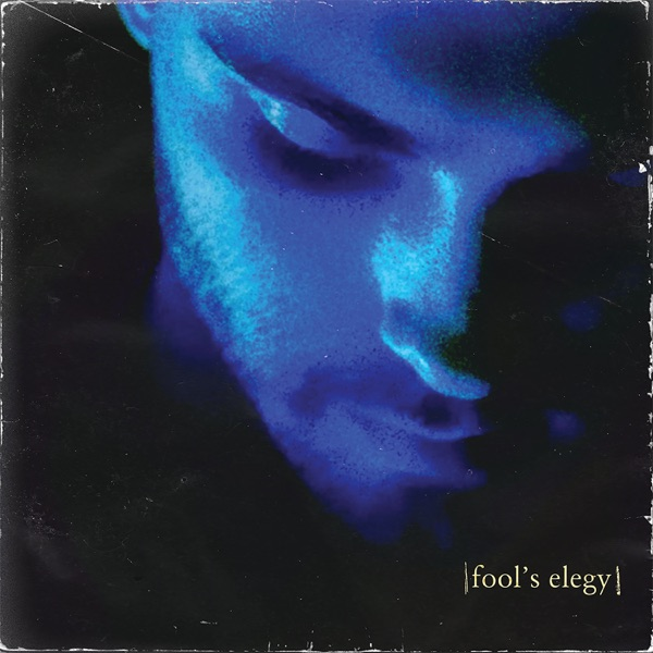 fool's elegy - Single
