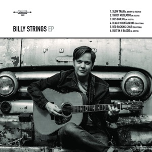 Billy Strings - Dust in a Baggie