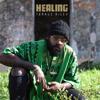 Lighter (feat. Shenseea & Rvssian) - Tarrus Riley