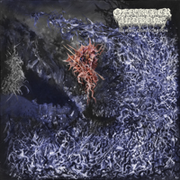 Of Feather And Bone - Sulfuric Disintegration artwork