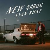 Evan Shay - New Normal (feat. Sarah Rossy, John Hollenbeck & Aaron Otheim)