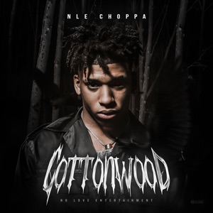 NLE Choppa - Chances