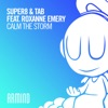 Calm the Storm (feat. Roxanne Emery) - Single