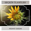 Hidayet Doğan - Seçkin İlahiler (Müziksiz İlahiler) artwork