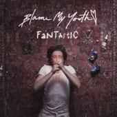 Blame My Youth - Fantastic