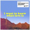 I Want To Know What Love Is BLOND ISH Sunrise Jungle Rework Single