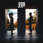 What I like About You (feat. Theresa Rex) - Jonas Blue - Jonas Blue