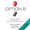 Sheryl Sandberg - Option B  artwork