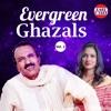 Evergreen Ghazals Vol 2