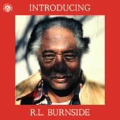 Introducing R.L. Burnside