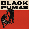 Black Pumas - Colors illustration
