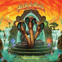 Tash Sultana - Terra Firma artwork