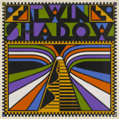 Alemania - Twin Shadow