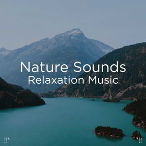 "Nature Sounds Nature Music & Nature Sounds - !!"" Nature Sounds Relaxation Music ""!!"