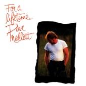 David Mallett - Some Peace Will Come
