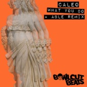 Caleo, ABLE - What You Do