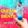 Icon Quema lo que Siente (feat. Afrojam & Rasta Lloyd) - Single