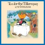 Cat Stevens - Where Do the Children Play?