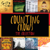 Counting Crows - Accidentally In Love ilustración