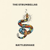 The Strumbellas - I'll Wait
