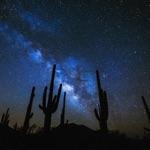 Kareem Ali - We Are Stardust
