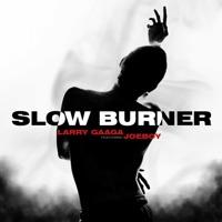 Larry Gaaga & Joeboy - Slow Burner