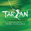 Tarzan: The Broadway Musical (Soundtrack from the Musical & Cast Recording), Phil Collins