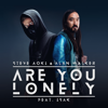 Steve Aoki & Alan Walker - Are You Lonely (feat. ISÁK) artwork