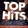 Various Artists - Top Hits 2021 artwork