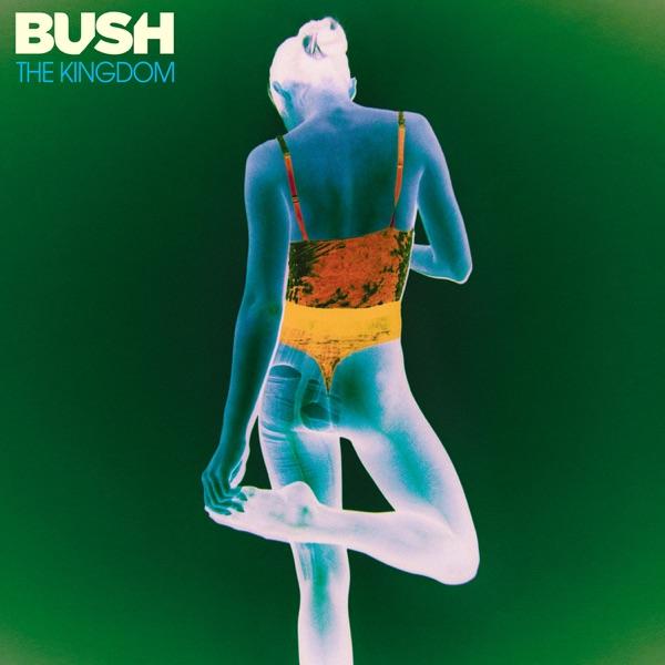 Bush mit Flowers On A Grave