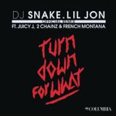 Turn Down For What Remix [feat. Juicy J, 2 Chainz & French Montana] DJ Snake & Lil Jon - DJ Snake & Lil Jon