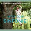Bodo Wartke & WDR Funkhausorchester - Jetzt oder Sinfonie! Grafik