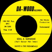 What Can I Do (To Prove My Love Is Real) b/w Soul & Sunshine - Single