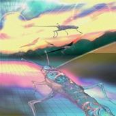 Slugs artwork