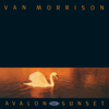 Van Morrison - These Are the Days Grafik