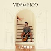 Vida de Rico artwork