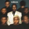 Tusse - Voices bild