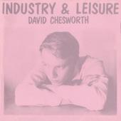 David Chesworth - Made to Function
