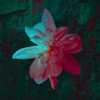download lagu Barasuara - Pikiran Dan Perjalanan