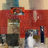 John Vanderslice - weirdo: the beginning