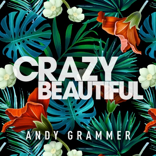 Art for Crazy Beautiful by Andy Grammer