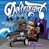 Delinquent Habits - California