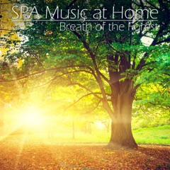 SPA Music at Home: Breath of the Forest (Relaxation Piano Music)