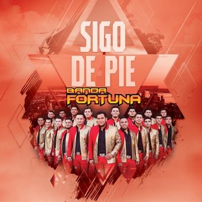 Sigo de Pie - Single - Banda Fortuna